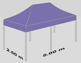 2500x5000mm tent